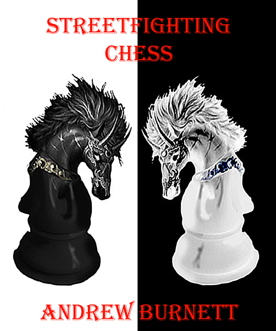 Streetfighting Chess (Andrew Burnett)