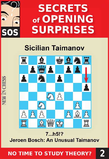 SOS File 2: Sicilian Taimanov with 7...h5!?
