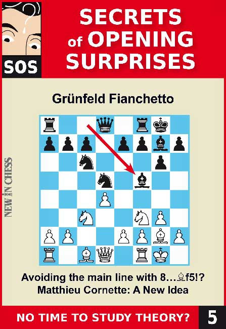 SOS File 5: Grünfeld Fianchetto; a New Idea